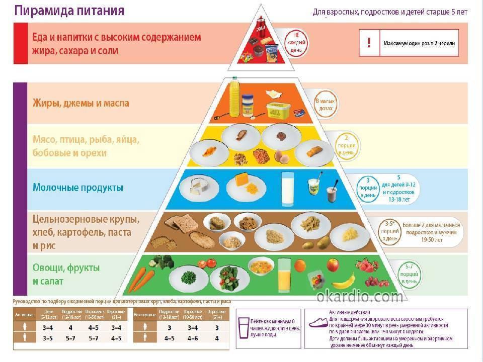 Правильное питание: инструкция для начинающих