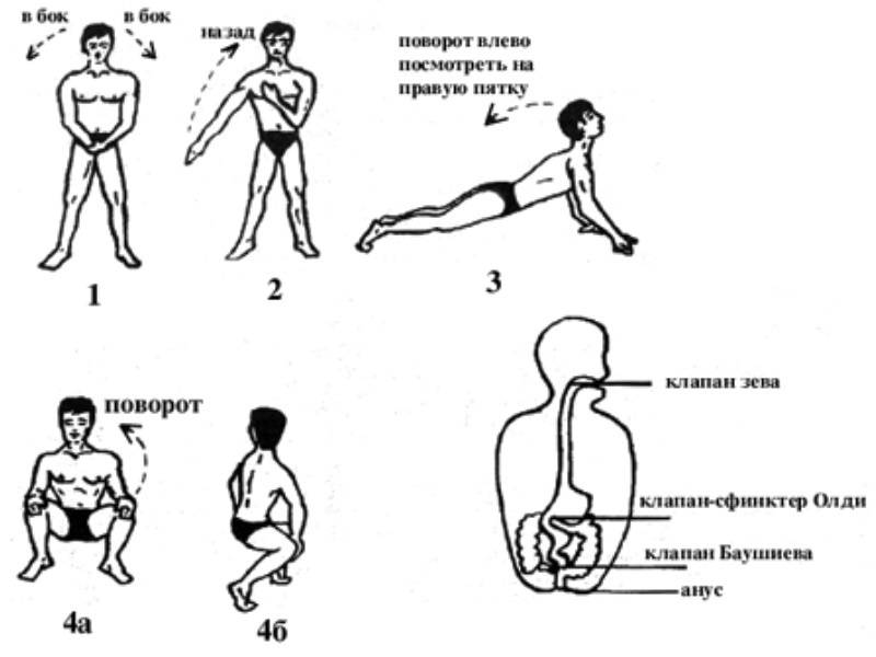 Мягкий шанкр: симптомы, лечение шанкроида у мужчин и женщин - причины, диагностика и лечение