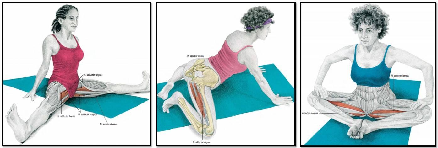 Лечение надрыва мышцы бедра в москве