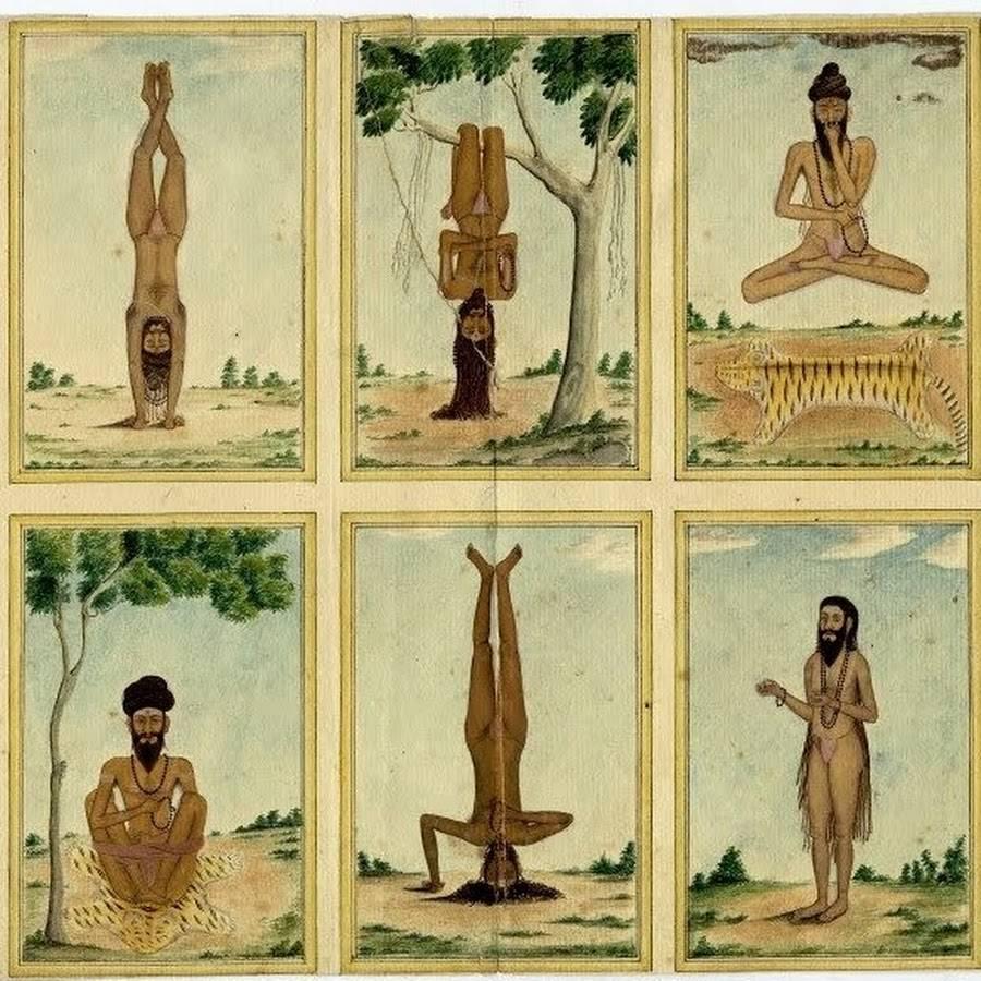 История йоги: развитие, основные этапы, тенденции и интересные факты