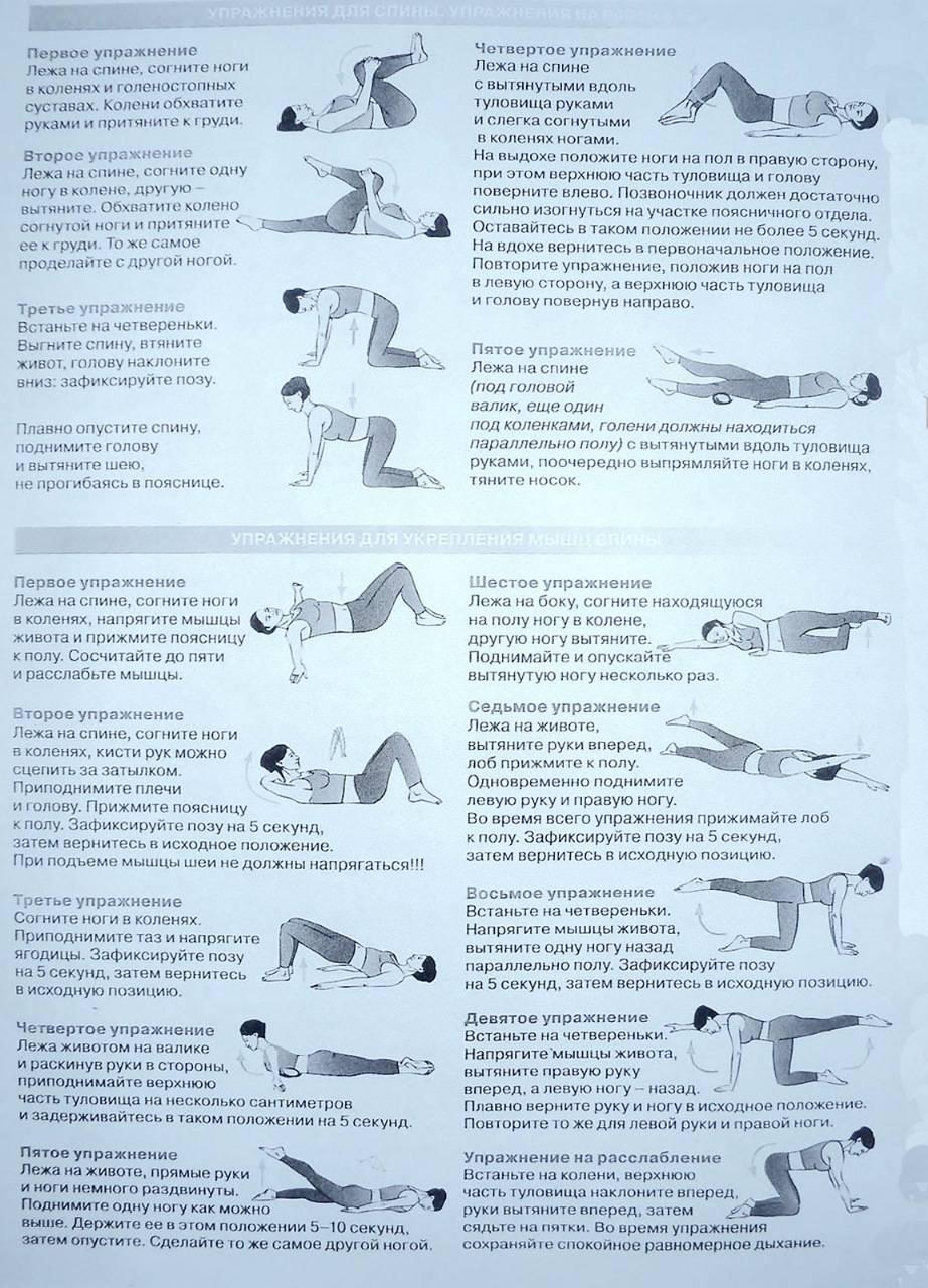 Спорт при протрузии поясничного отдела   теория фитнеса