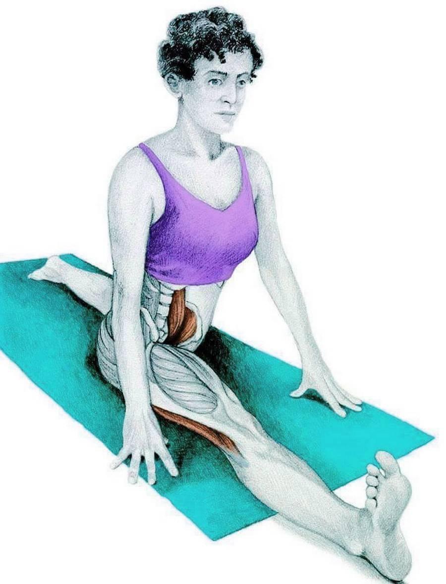 4 упражнения для коррекции переднего наклона таза | kinesiopro