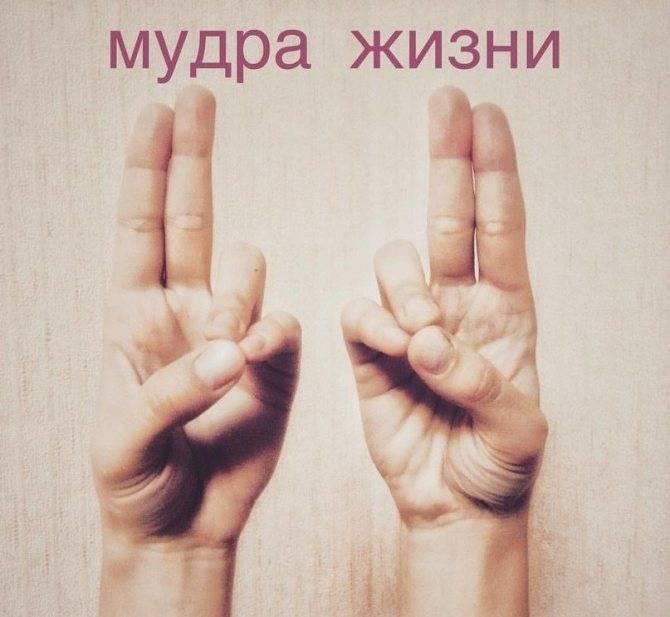 Притхиви-мудра (увеличение силы). исцеляющая сила мудр. здоровье на кончиках пальцев