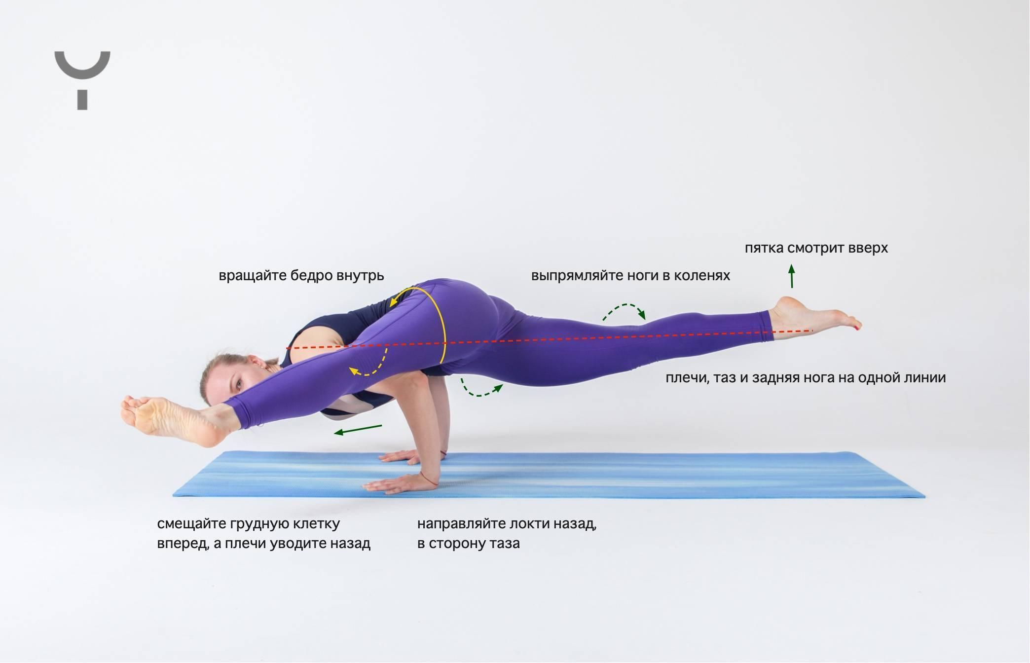 Асаны йоги для продвинутых: делаем стойки на руках (фото) :: фитнес ::  «живи!