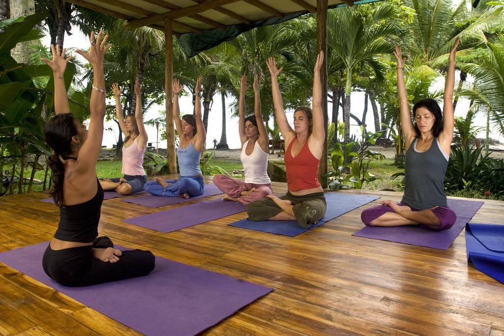 Предстоящие тренинги для учителей йоги в институте йоги сиддхи