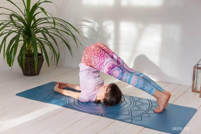 Поза плуга в йоге — халасана   ramananda.org
