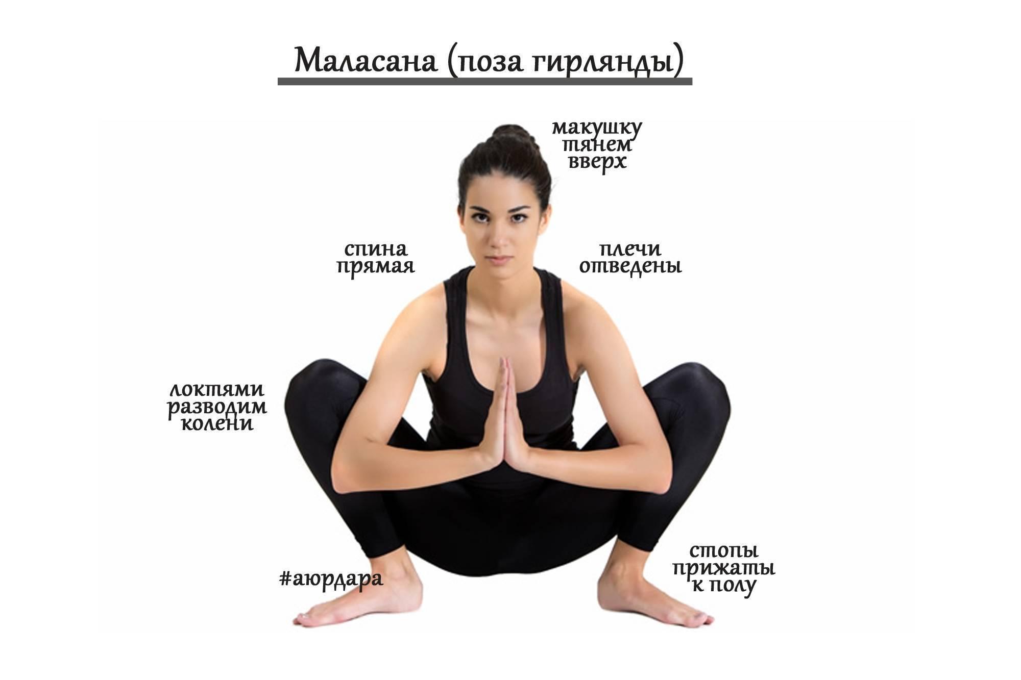 Шалабхасана: полная техника выполнения позы саранчи в йоге с фото и видео