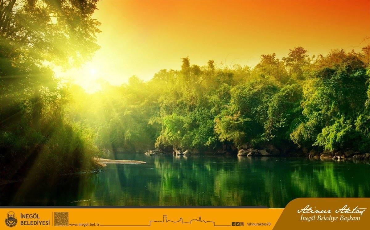 Медитация для успокоения нервной системы: снятие стресса и глубокое расслабление с видео