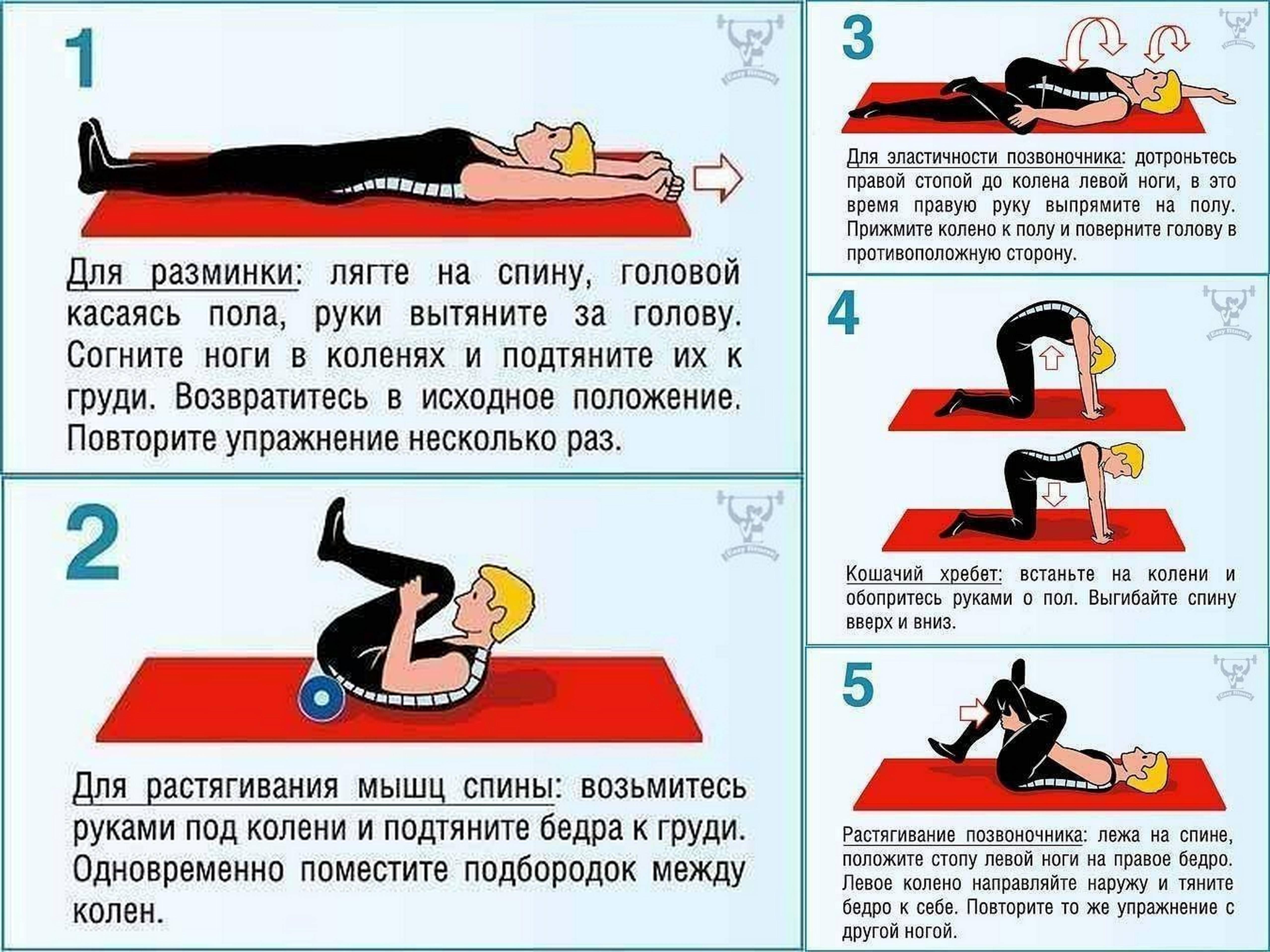 Плавание при грыже поясничного отдела позвоночника, упражнения