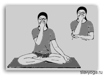 Тема 4 пранаяма. нади шодхана (этап 1)