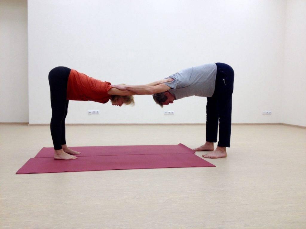 Парная йога — 12 простых асан для начинающих и полезные эффекты от занятий вдвоем