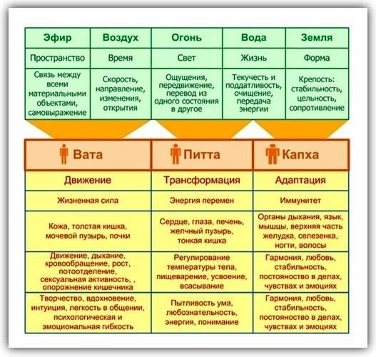 Капха доша – питание и образ жизни согласно аюрведе