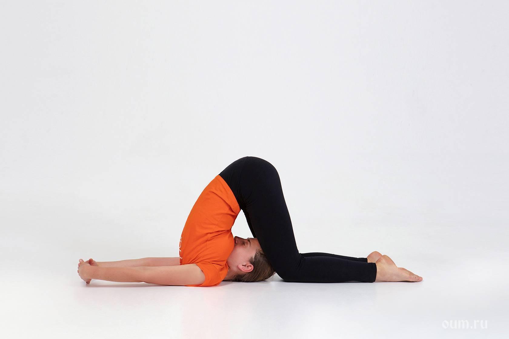 Халасана или поза плуга в йоге: техника выполнения, польза, противопоказания