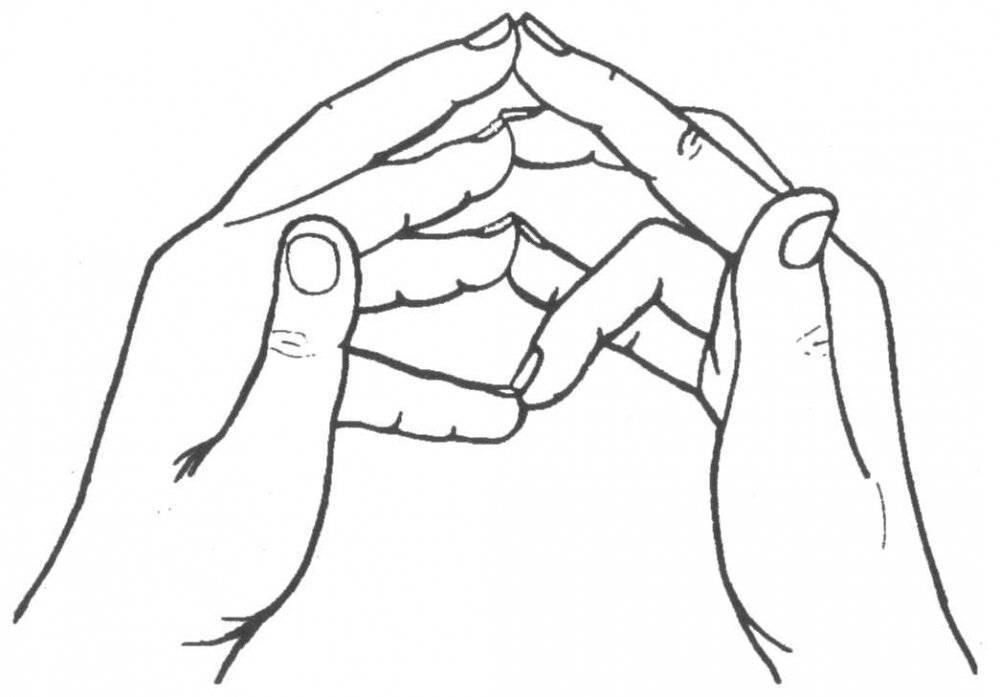 Читать книгу целительные мудры татьяны громаковской : онлайн чтение - страница 6