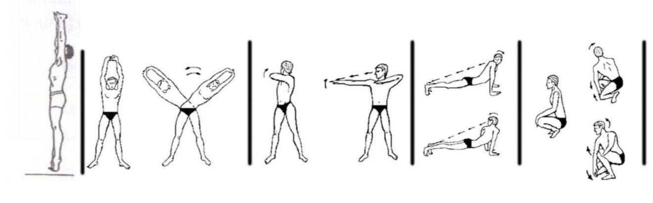 Как правильно делать упражнение шанк пракшалана, инструкция
