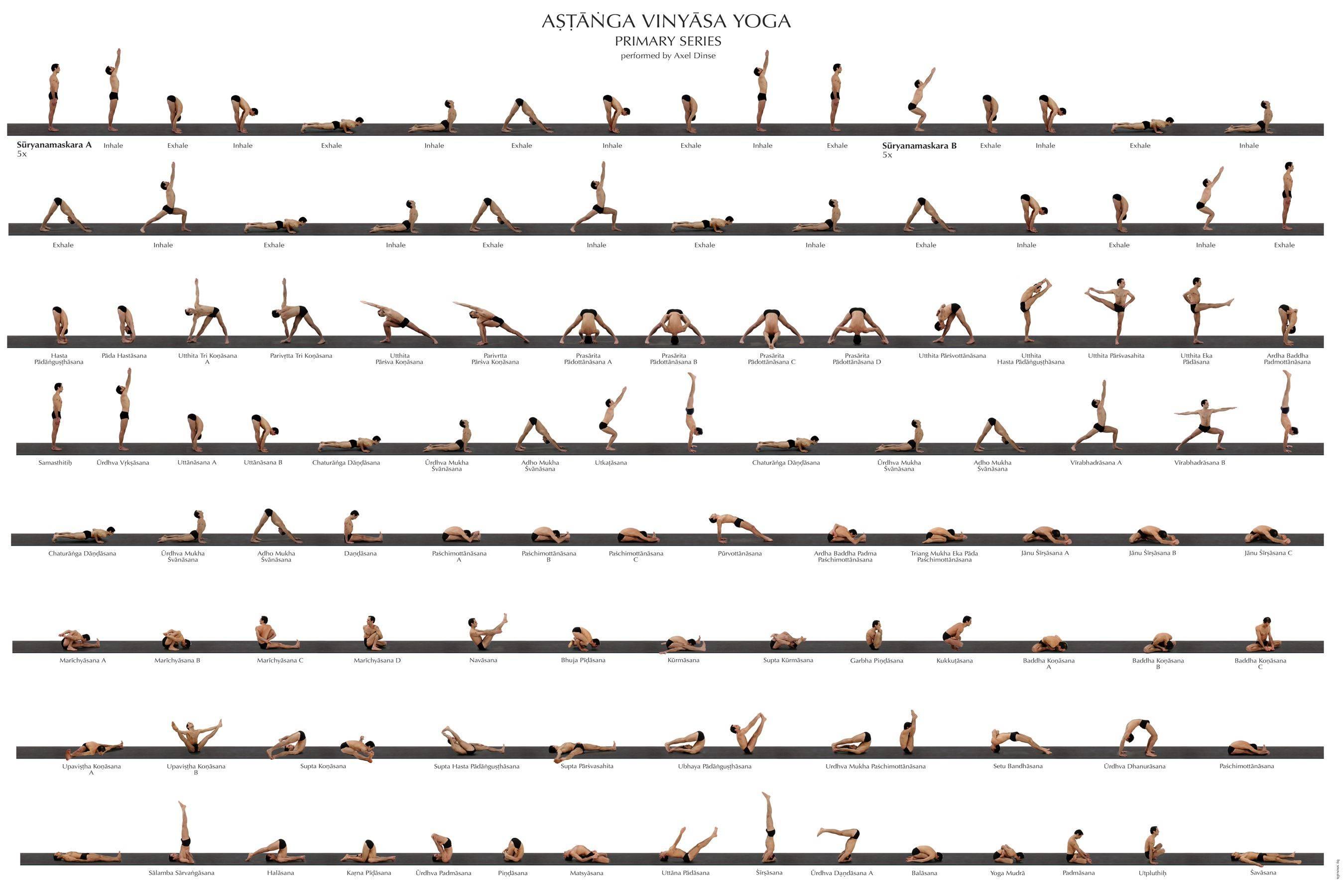 Хатха, аштанга, виньяса, бикрам: как выбрать идеальный класс йоги