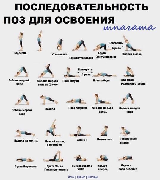 10 асан йоги для спины и здорового позвоночника » университет mindvalley