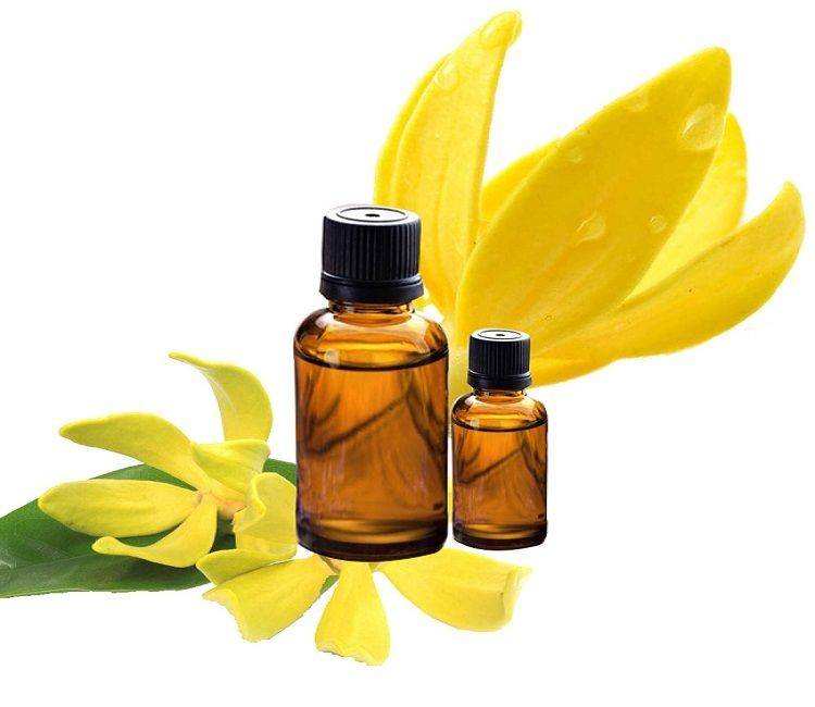 Эфирное масло иланг-иланг для волос - 7 секретов применения.