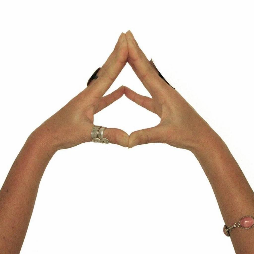 Мудра — ритуальное положение рук. обзор методик практики