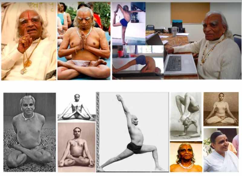 Йога и вегетарианство | федерация йоги россии – федерация йоги россии