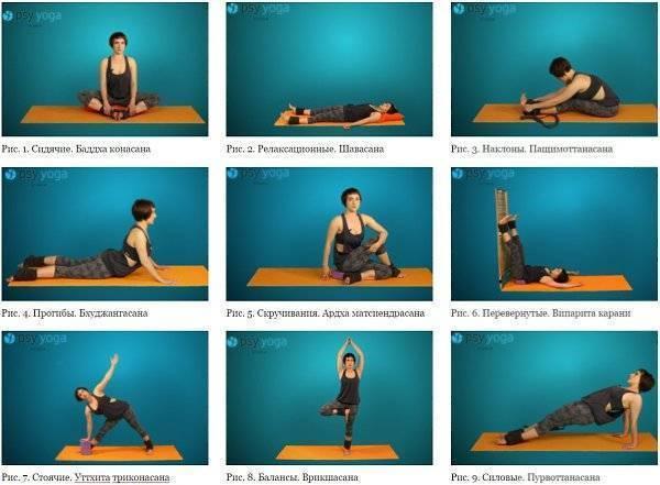 Йога для начинающих в домашних условиях: основные асаны для новичков