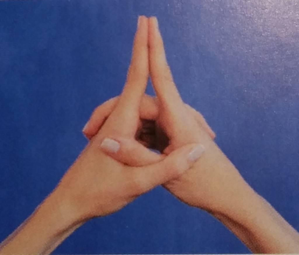 Мудра - ритуальное положение рук. обзор методик практики