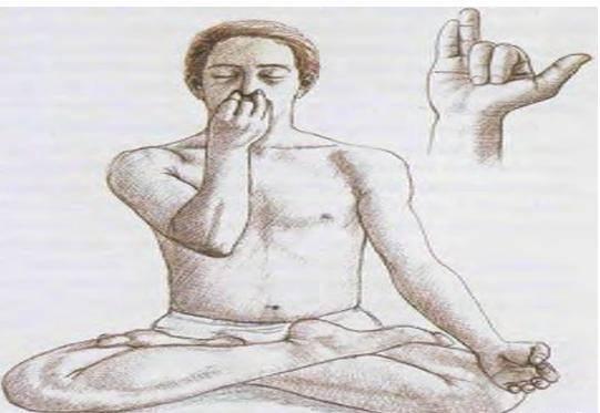Пранаяма. анулома вилома. видео-урок