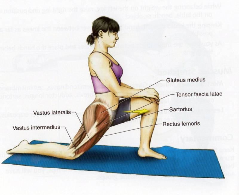 Как правильно растягивать мышцы бедра