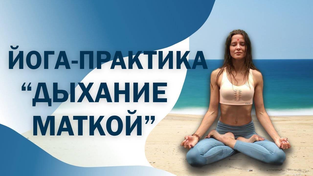 Книга: йога в кармане женская практика