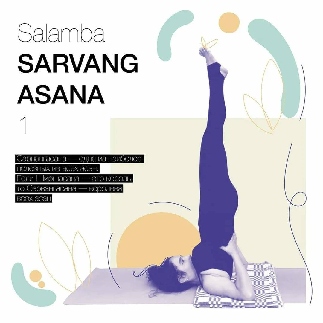 Сарвангасана. саламба сарвангасана (перевод с санскрита: стойка на плечах). | здоровье человека