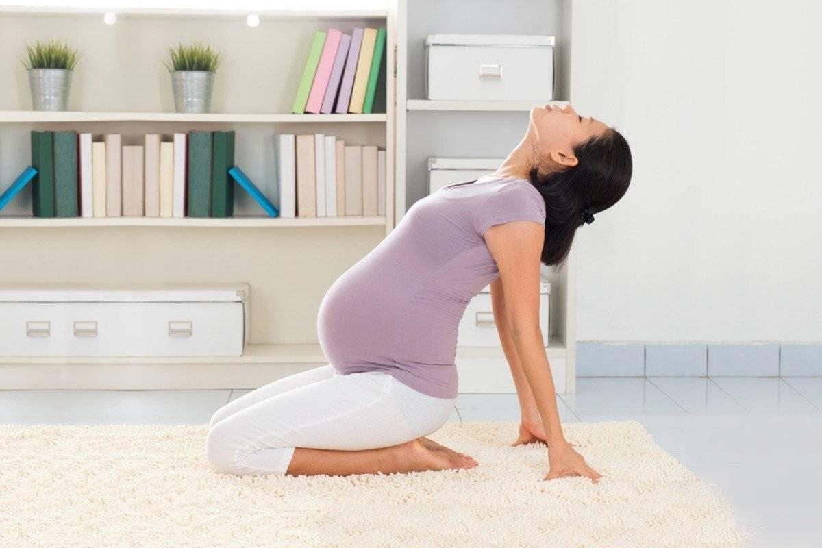 Йога для беременных: сукхасана, удобная поза сидя | федерация йоги россии – федерация йоги россии