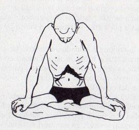 Бандхи в йоге (мула, уддияна, джаландхара) - свами даши