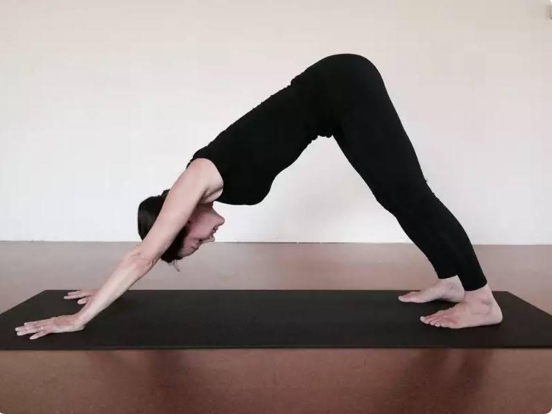 Поза плуга в йоге — халасана