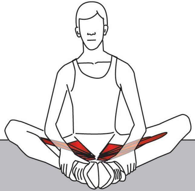 Растяжение ягодичной мышцы: симптомы и лечение в клинике стопартроз в москве