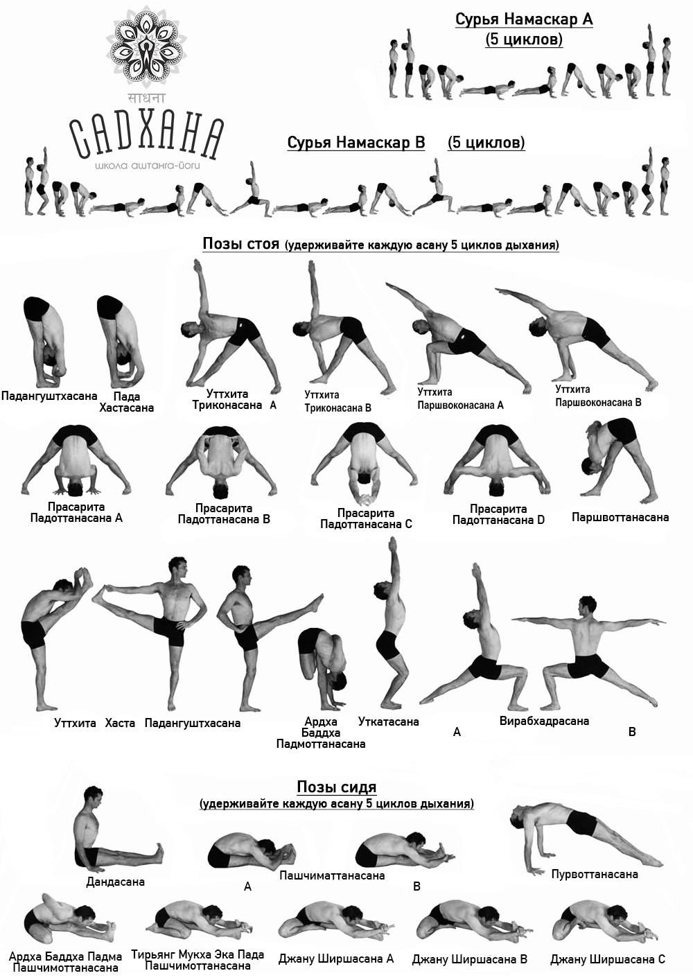 Основы йоги айенгара – чудо симметрии