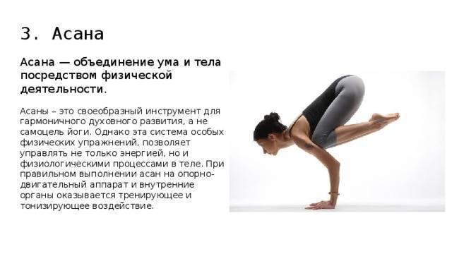 Чем полезна йога для организма и здоровья, какие виды и занятия йогой выбрать