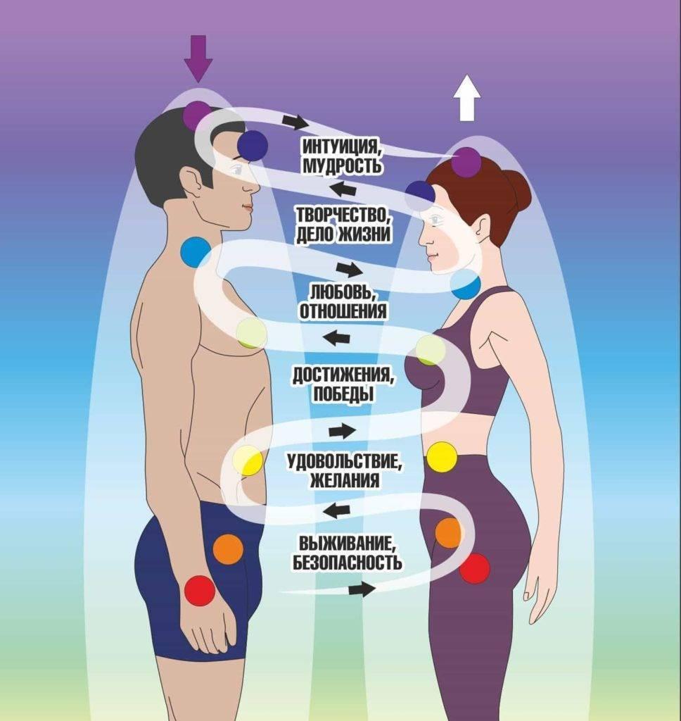Совместимость партнера по чакрам и инконтри. совместимость по чакрам и по дате рождения: виды союзов и расчет