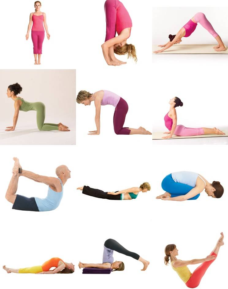 Разрешена ли йога при протрузии поясничного отдела позвоночника