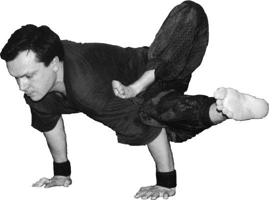 Интервью с известными йогами