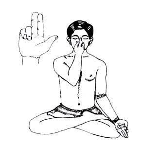 Нади шодхана пранаяма: правильная техника упражнений