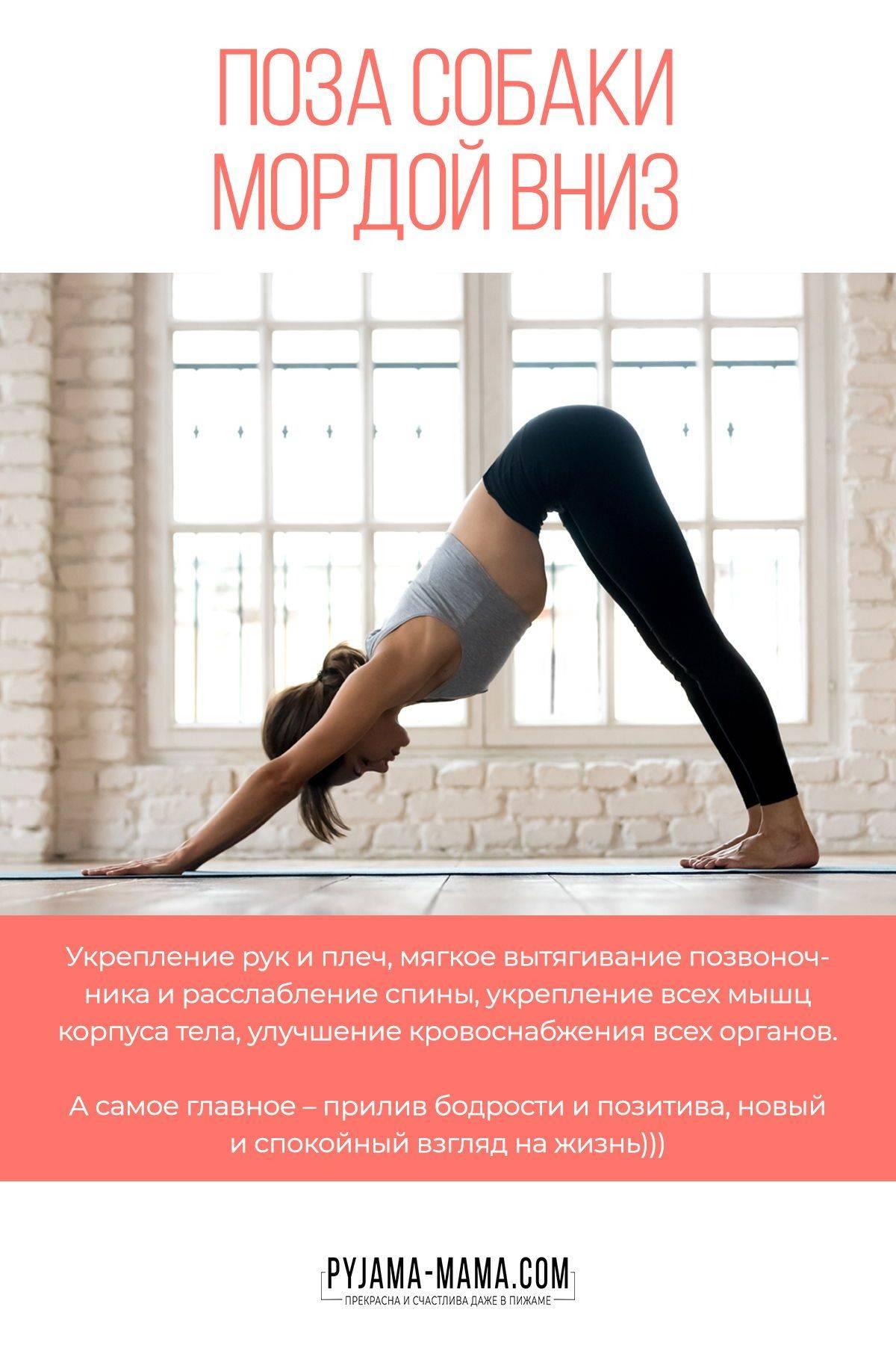 Йога для похудения для начинающих в домашних условиях: эффективные упражнения и позы, достаточно 15 минут