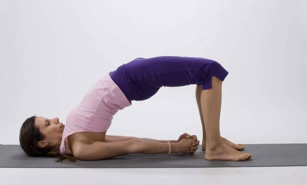 Поза березки в йоге / сарвангасана техника выполнения - yoga for me