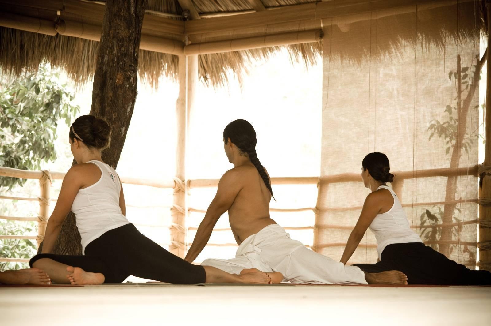 История зарождения и способы выполнения даосской йоги