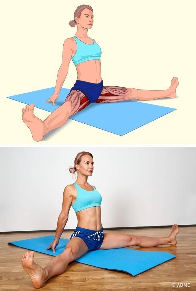 Упражнения на растяжку: подборка на все группы мышц :: здоровье :: рбк стиль