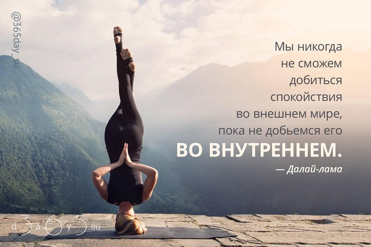 Урок 1: человек - личность - 100urokov.ru