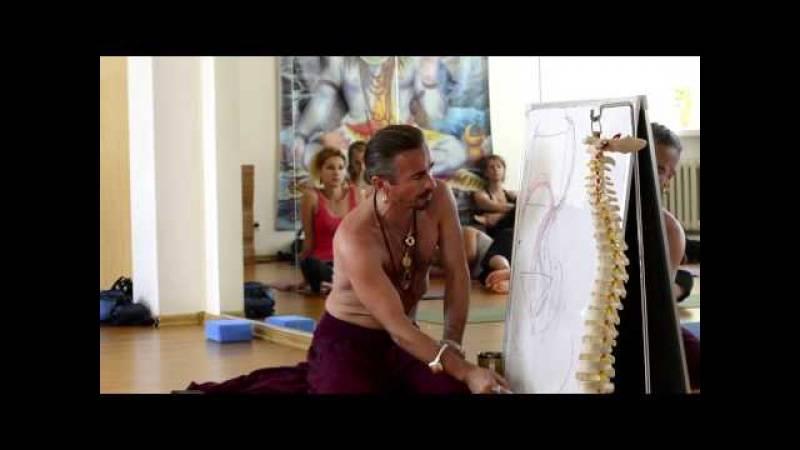 Ишвара-йога: польза и техника выполнения для начинающих