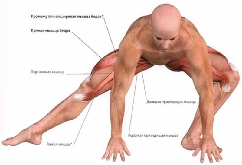 Растяжка мышц бедра