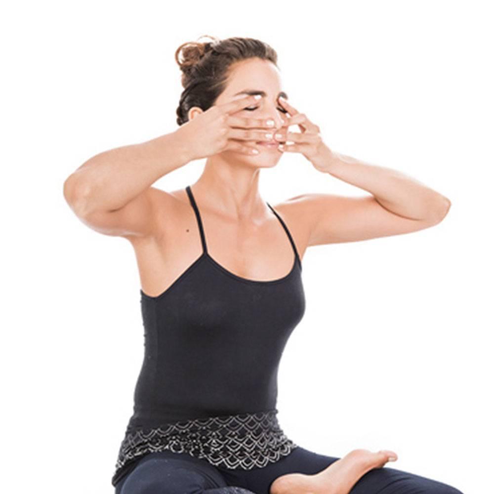 Виды техник дыхания пранаяма йоги: бхрамари, враджана и др.