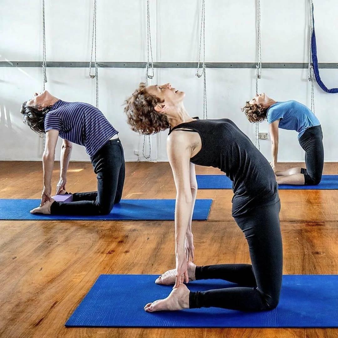 Йога айенгара: асаны. йога айенгара для начинающих
