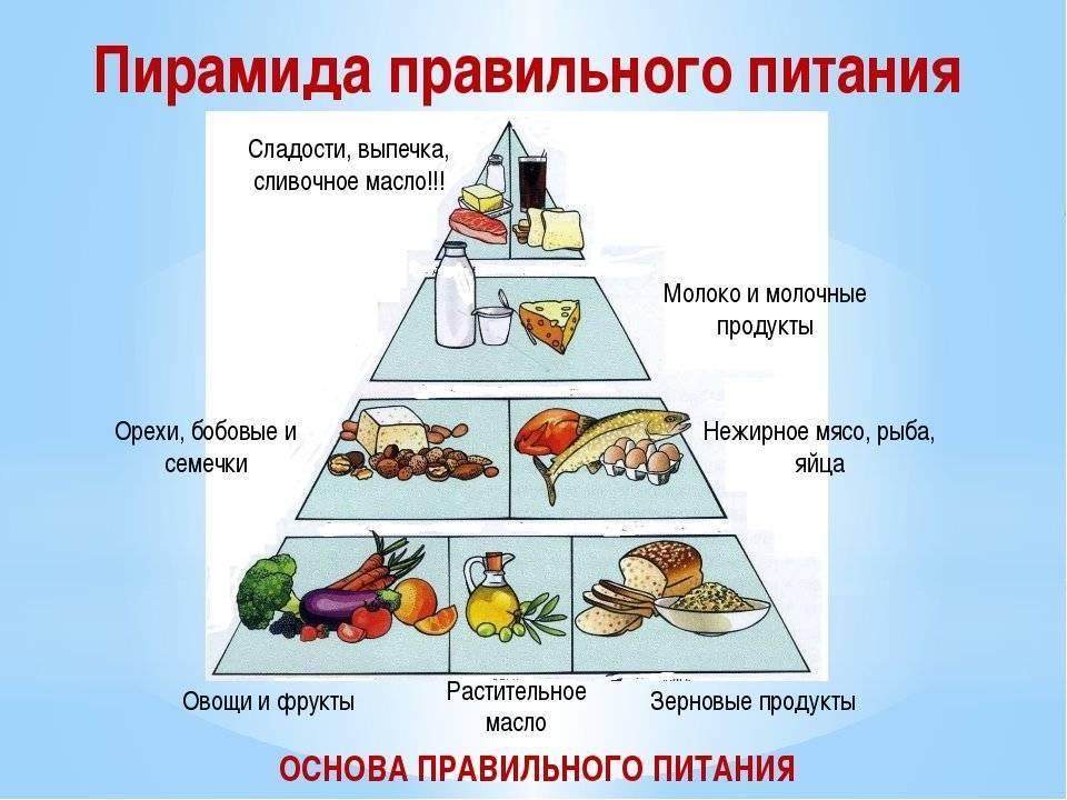 Как начать правильно питаться: все о правильном питании для начинающих